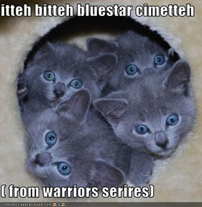 itteh bitteh bluestar cimetteh  ( from warriors serires)