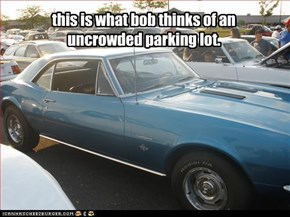 this is what bob thinks of an uncrowded parking lot.