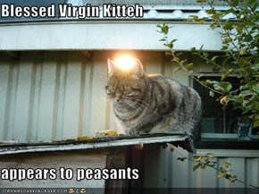 Blessed Virgin Kitteh  appears to peasants