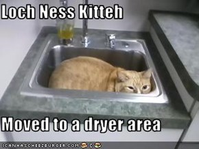 Loch Ness Kitteh  Moved to a dryer area