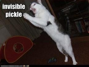 invisible pickle