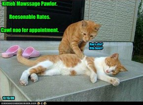 Kitteh Mawssage Pawlor.  Reesonable Rates.  Cawl nao fer appointment.