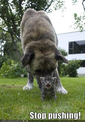 Stop pushing!