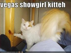 vegas showgirl kitteh