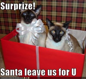 Surprize!  Santa leave us for U