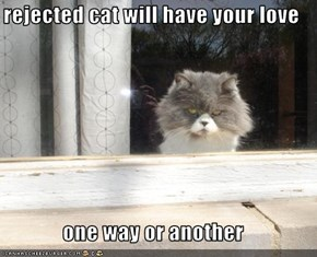 rejected cat will have your love  one way or another