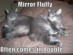 Mirror Fluffy  Often comes in double