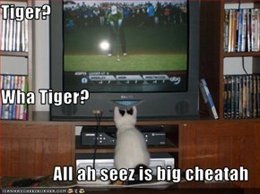 Tiger?  Wha Tiger? All ah seez is big cheatah