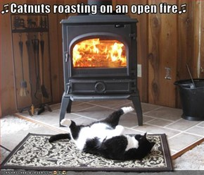 ♫Catnuts roasting on an open fire♫