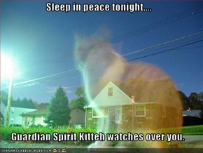 Sleep in peace tonight....  Guardian Spirit Kitteh watches over you.