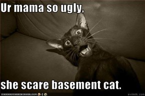 Ur mama so ugly,  she scare basement cat.