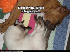Slumber Party....Kitteth & Goggie style......