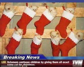 Breaking News - Octomom confuses children by giving them all exact same cat for christmas.