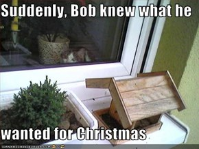 Suddenly, Bob knew what he   wanted for Christmas