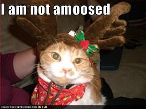 I am not amoosed