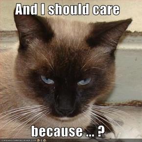 And I should care  because ... ?