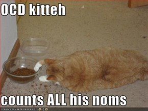 OCD kitteh  counts ALL his noms