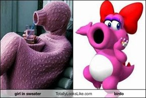 girl in sweater Totally Looks Like birdo