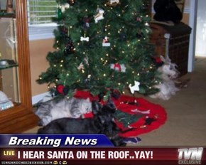 Breaking News - I HEAR SANTA ON THE ROOF..YAY!