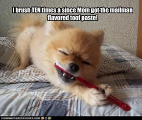 I brush TEN times a since Mom got the mailman flavored toof paste!