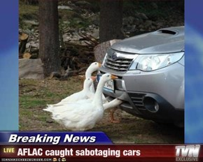 Breaking News - AFLAC caught sabotaging cars