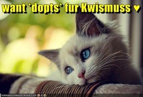 want *dopts* fur Kwismuss ♥
