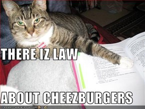 THERE IZ LAW ABOUT CHEEZBURGERS