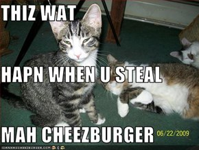 THIZ WAT  HAPN WHEN U STEAL MAH CHEEZBURGER