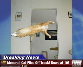 Breaking News - Monorail Cat Flies Off Track! News at 10!