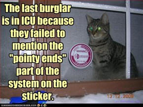 "The last burglar is in ICU because they failed to mention the ""pointy ends"" part of the system on the sticker."