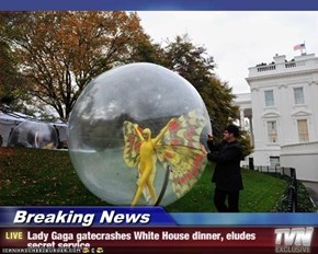 Breaking News - Lady Gaga gatecrashes White House dinner, eludes secret service