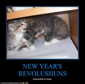 NEW YEAR'S REVOLUSHUNS