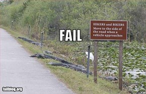 Everglade Tourism Fail