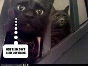 DON' BLINK DON'T BLINK DON'TBLINK