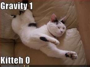 Gravity 1  Kitteh 0