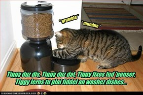 Tiggy duz dis, Tiggy duz dat, Tiggy fixes fud 'penser, Tiggy lerns tu plai fiddel an washez dishes...