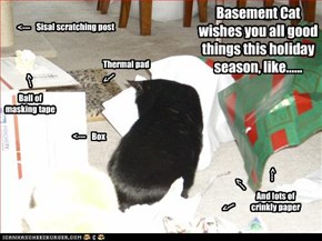 Holiday Wishes from Basement Cat
