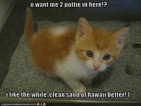 u want me 2 pottie in here!?  i like the white, clean sand of hawaii better!:(