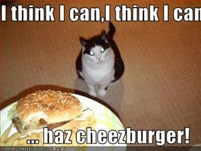 I think I can,I think I can  ... haz cheezburger!