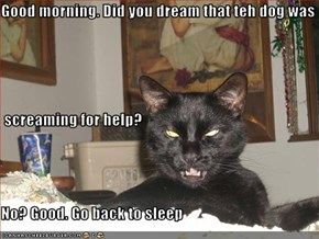 Good morning. Did you dream that teh dog was  screaming for help? No? Good. Go back to sleep