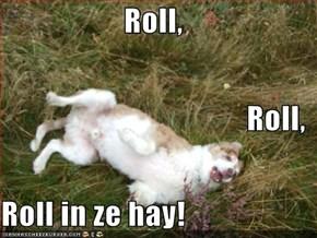 Roll, Roll, Roll in ze hay!