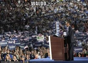 WALDO >>>