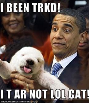 I BEEN TRKD!  I T AR NOT LOL CAT!