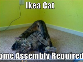 Ikea Cat  Some Assembly Required