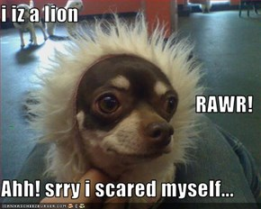 i iz a lion RAWR! Ahh! srry i scared myself...