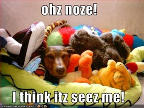 ohz noze!  I think itz seez me!