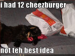 i had 12 cheezburger  not teh best idea