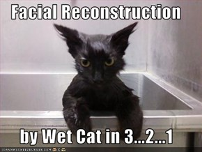 Facial Reconstruction   by Wet Cat in 3...2...1