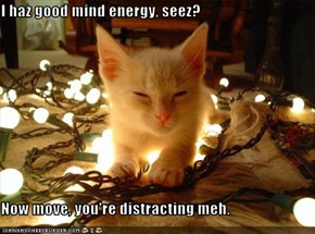 I haz good mind energy, seez?  Now move, you're distracting meh.
