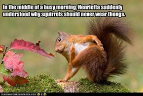 In the middle of a busy morning, Henrietta suddenly understood why squirrels should never wear thongs.